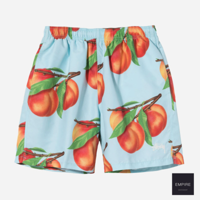 STUSSY PEACHES WATER SHORT - Blue